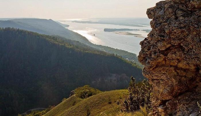 В Жигулевском заповеднике за барсуками и косулями наблюдают через видеоловушки