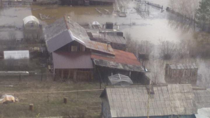 Жители от эвакуации отказались: в Чусовом подтопило микрорайон Подъеловики