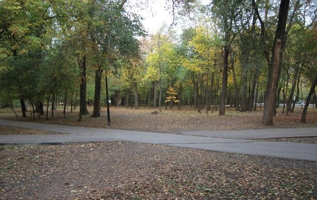 В парке Островского в Ростове построят теннисный корт и спорткомплекс за 40 млн рублей
