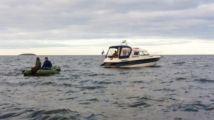 Архангельские спасатели нашли заблудившегося в камышах рыбака