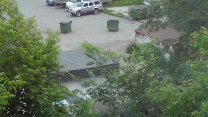 Шквалистый ветер разбросал мусорные контейнеры, уронил дерево и светофор в Челябинске