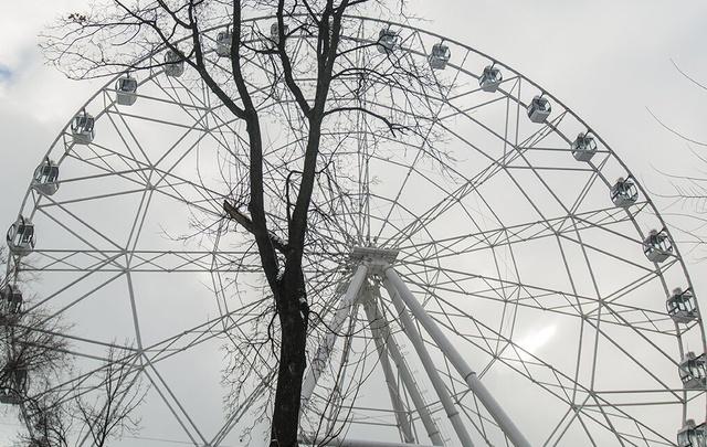 Фестиваль «Зеленые дни Германии» пройдет в Ростове