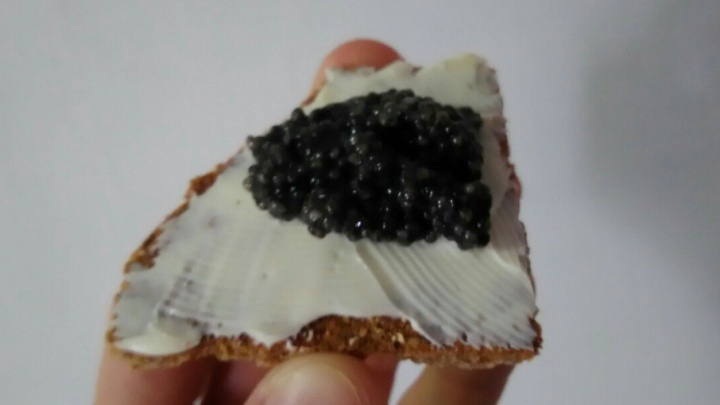 В Прикамье будут продавать черную икру местного производства