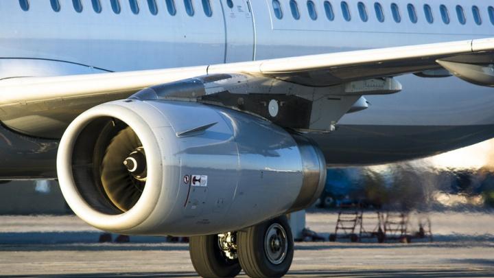 Aviasales: только треть путешественников полетит за рубеж на ноябрьские праздники