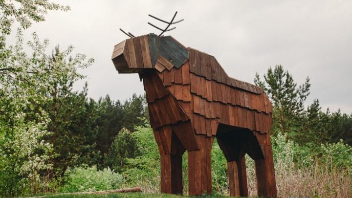 Пешеходные дорожки, отсыпанные щепой, и деревянные фигуры зверей: смотрим, как изменился экопарк «Затюменский»