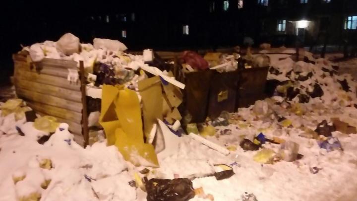 Жителям Кировского района оставили зловонные напоминания о новогодних праздниках