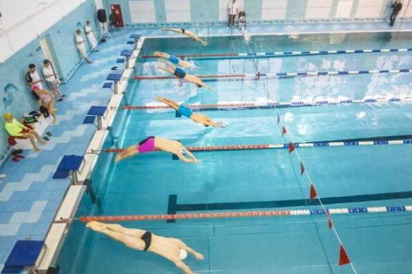 Школьники смогут протестировать бассейн в этом учебном году