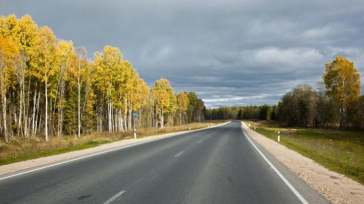 Прощай, ямы: в Плесецком районе заасфальтировали 35 километров автотрассы
