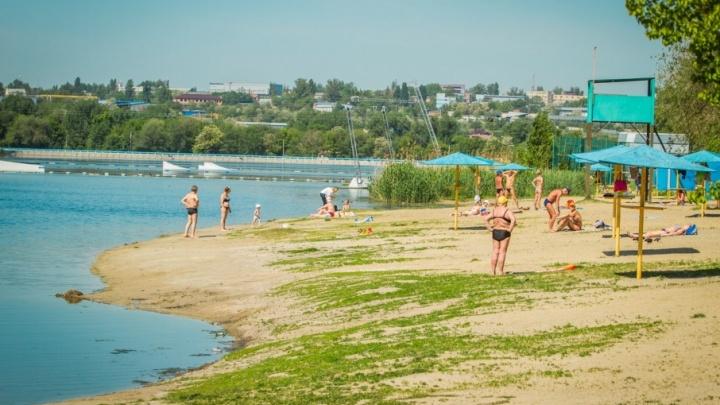 Правительство: за отдых на диких пляжах Дона будут привлекать к ответственности