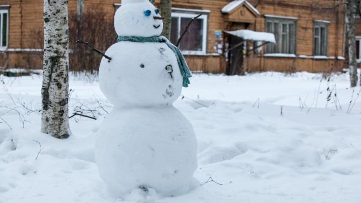 Синоптики пообещали Поморью снег и легкий ночной мороз во вторник