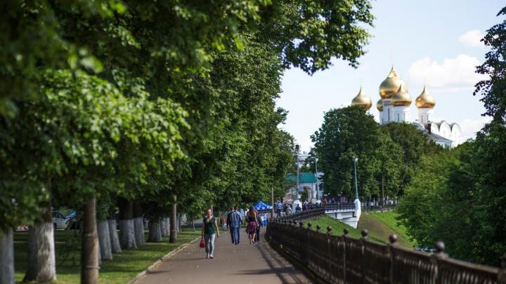 Выходные с 76.ru: гонки на кроватях, медитация с собаками и летняя вечеринка