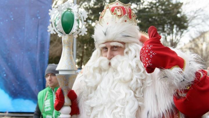 Волгоградцев зовут на свидание с Дедом Морозом и сверкающим котом