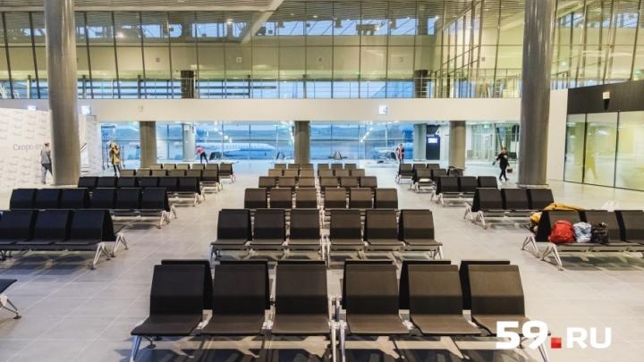 Рейс в Душанбе включили в летнее расписание пермского аэропорта: полеты возобновятся в апреле