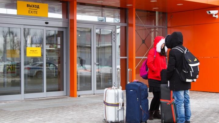 Волгоградцам разрешили летать бесплатно в костюме Деда Мороза и Снегурочки