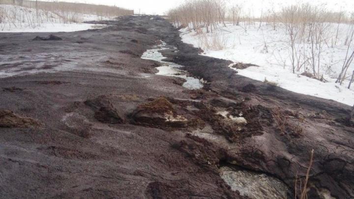 В реку в Ярославской области вылили куриный помёт