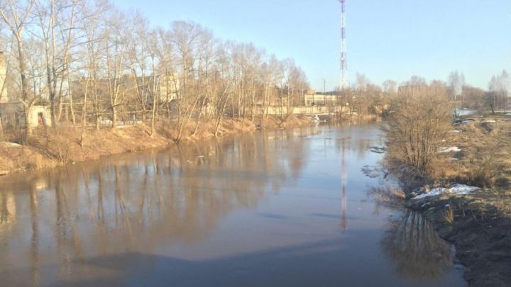 Следователи выяснят, по чьей вине в Ростовском районе потекла вода с навозом