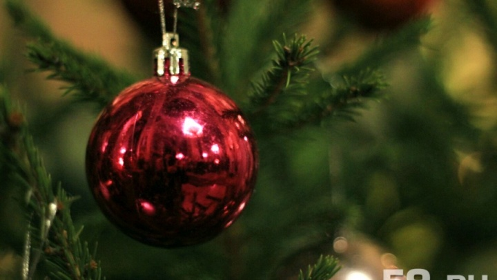 Аналитики рассказали, сколько стоит снять квартиру на Новый год в разных районах Перми