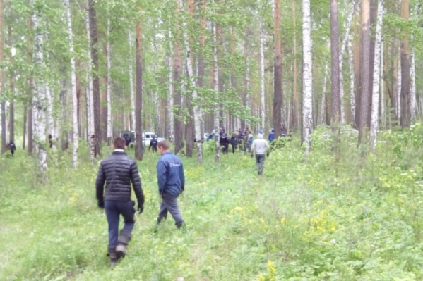 Женщин и детей вывели на опушку леса, где хищник на них не сможет напасть.