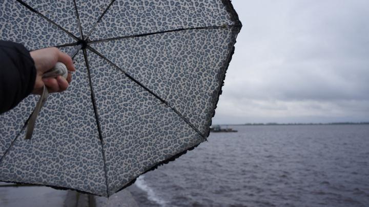 В Архангельской области до конца недели синоптики обещают теплую погоду, дожди и грозы
