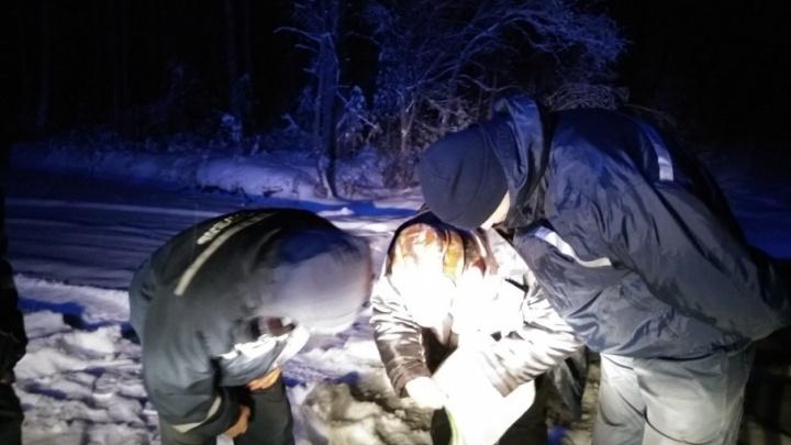Отправился на поиски лаек Белки и Барса и потерялся: спасатели нашли тюменца, заблудившегося в лесу