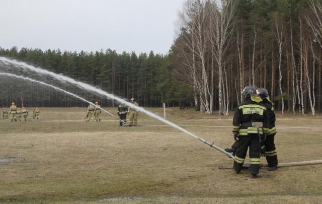 Ярославские спасатели «потушили» гигантский лесной пожар в Заволжском бору