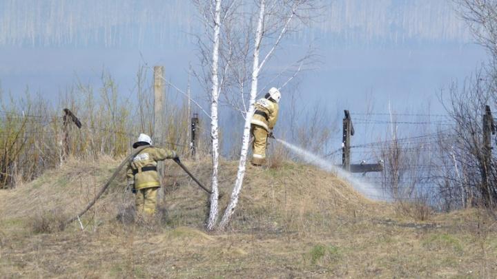 В МЧС России недовольны позицией властей Челябинской области относительно лесных пожаров