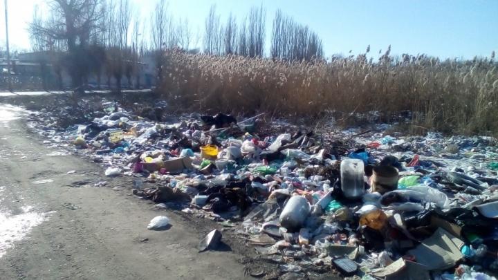 Жители заваленной мусором улицы в Волгограде готовятся к очередным пожарам