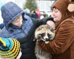 Ребята и зверята в зоопарке: детишки обнимали лису и кормили северного оленя