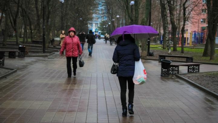 Рабочая неделя в Ростове обещает быть холодной и пасмурной