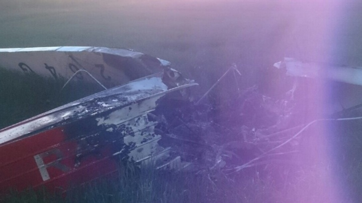 Пилот упавшего под Волгоградом самолета умер на руках у врачей