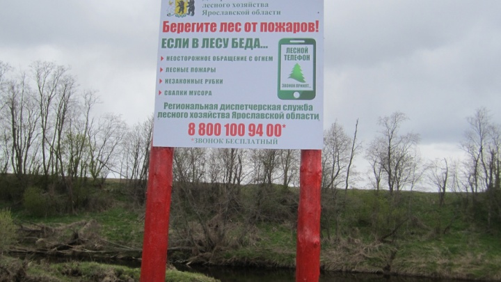 В Ярославле снизилось количество лесных пожаров