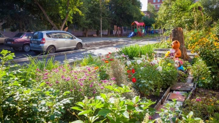Жители дома на Образцова очистили свой двор от автомобилей