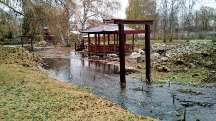 Ботсад ПГНИУ рискует сорвать выполнение контракта с минприроды Прикамья из-за потопа