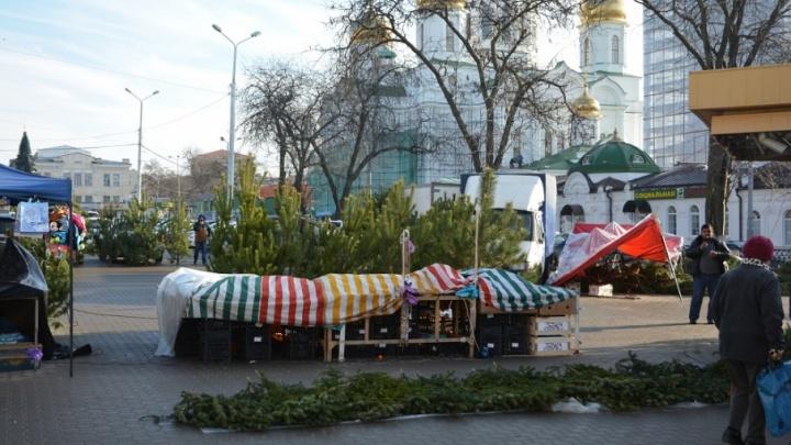 Лучше поздно, чем никогда: в Ростове закрыли 13 незаконных елочных базаров