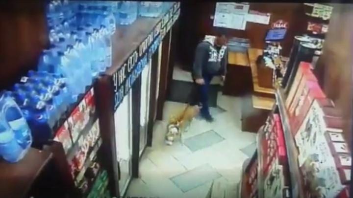 Стаффордширский терьер напал на двоих мужчин в Челябинске
