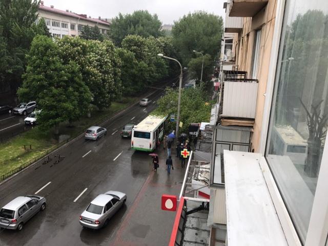 Дерево упало на женщину, ожидавшую автобус