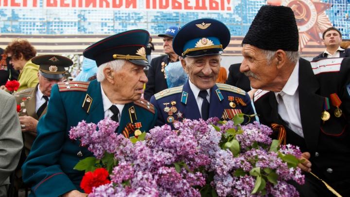Ветеранов поздравят с 75-летием Сталинградской битвы конфетами и чаем