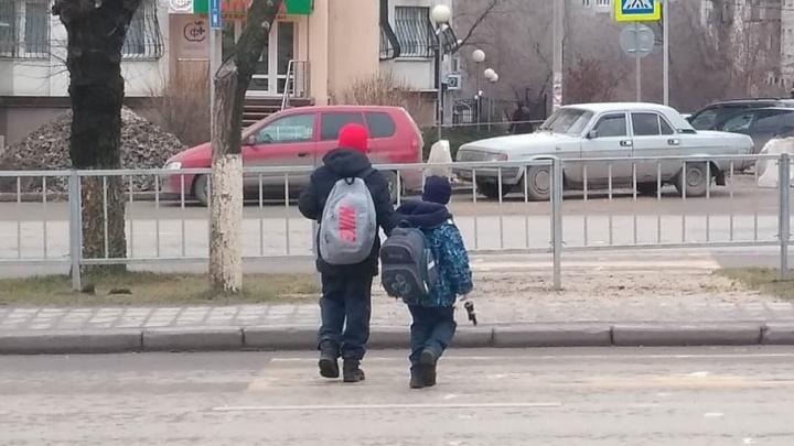 Волгоградцы заинтересовали ГИБДД переходом на Невской