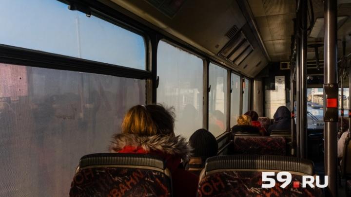 Пермяков попросили сообщать в ГИБДД о водителях автобусов, нарушающих Правила дорожного движения