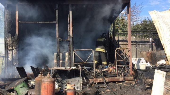 На пожаре в челябинском приюте для животных погибла собака