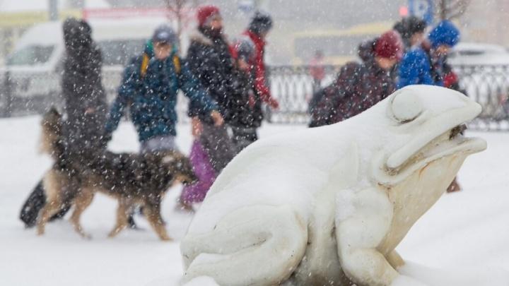 В Волгоградской области ожидаются крепкие ночные морозы и северный ветер