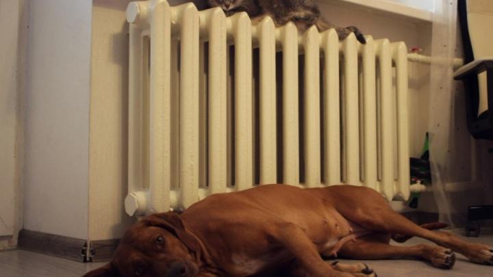 Отопление в дома на  Безымянке  подадут ближе к вечеру