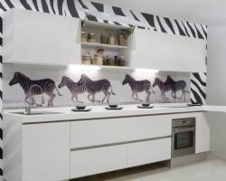 Огромная зебра гуляет по Тюмени