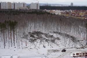 Вид на берёзовую рощу между Краснолесья – Мехренцева – Вонсовского, куда должен был переехать УрГАУ.