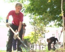 Сотрудники ЧКПЗ взялись за озеленение Ленинского района