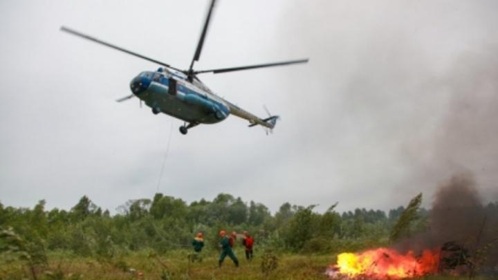 Для борьбы с лесными пожарами в Поморье усилено авиационное патрулирование