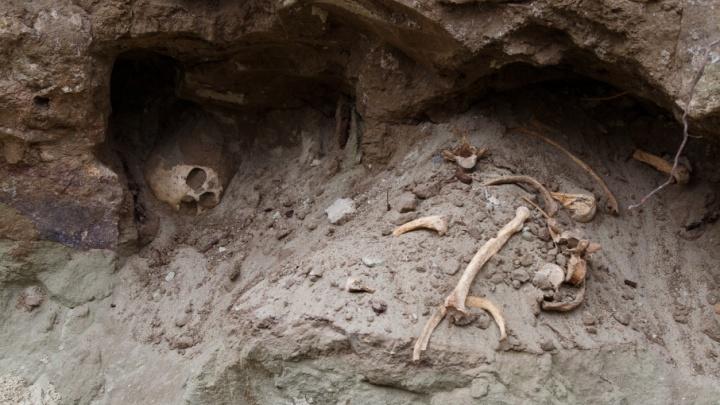 В Волгограде решают судьбу раскопанного коммунальщиками древнего кладбища