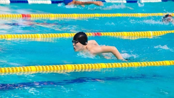 В Волгограде обсудят перспективы подготовки будущих олимпийских чемпионов