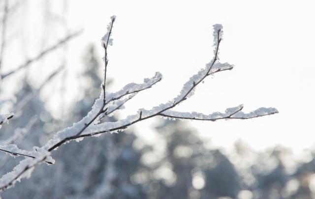 В выходные потеплеет: пермяков ожидает небольшой снег и солнце