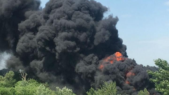 На выезде из Ростова пылает камыш и мусор